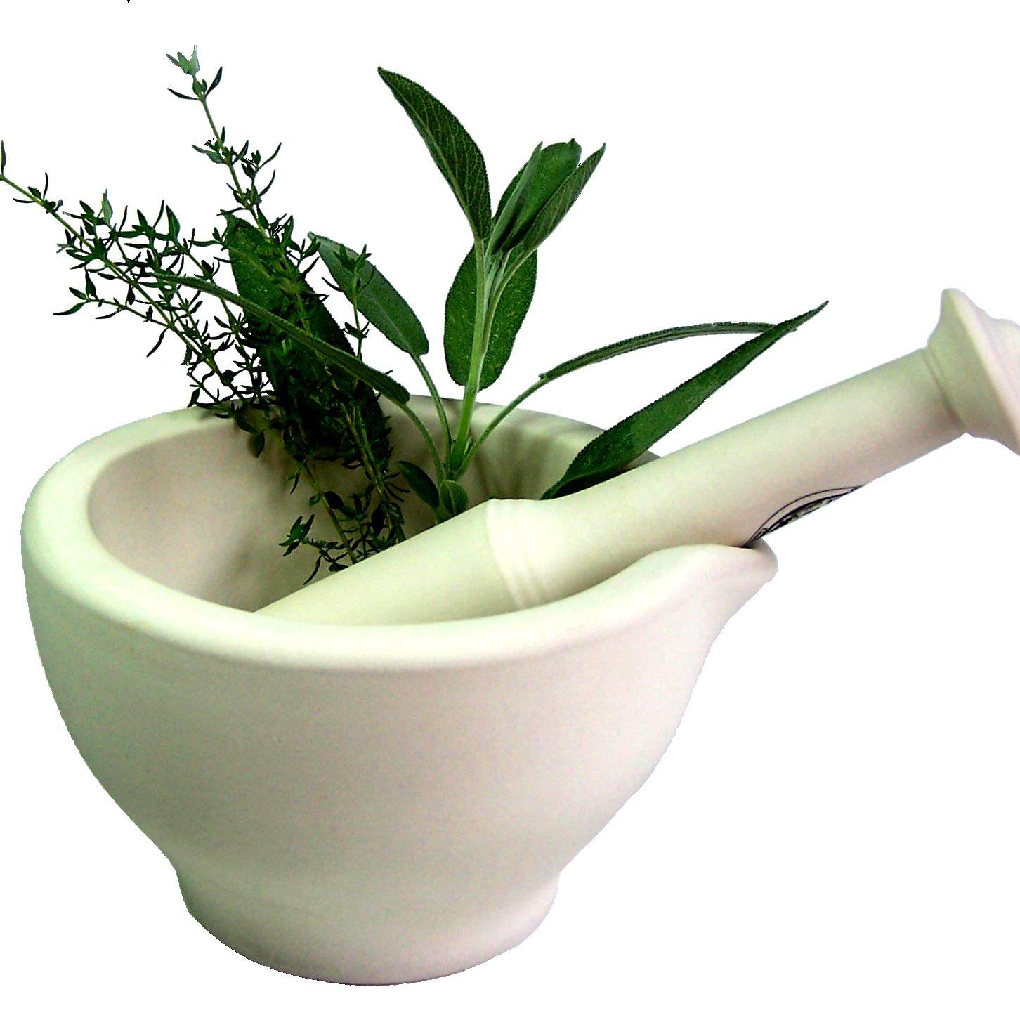 2. Heilpflnazen-Medicinal Plants